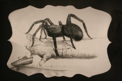 """A Noiseless Patient Spider"" 40x48 charcoal and graphite on paper 2011"